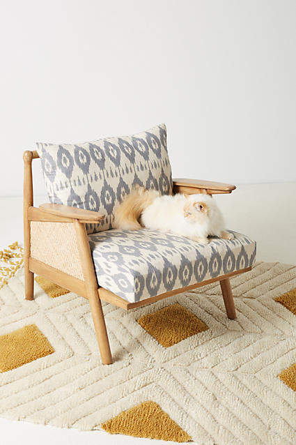 Prettiest Anthropologie Chairs: Anthropologie Washed Ikat Cane Chair